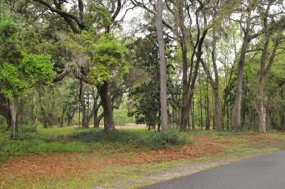 Johns Island Residential Lots & Land For Sale: Gnarled Oaks Lane
