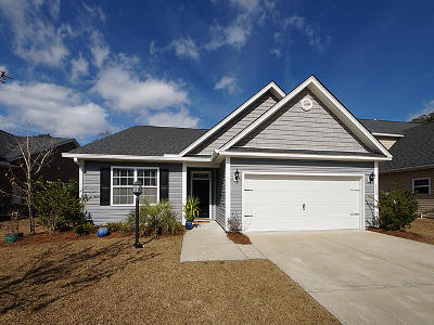 Johns Island Single Family Home For Sale: 1544 Maple Grove Drive
