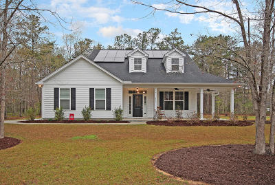 Summerville Single Family Home For Sale: 152 Fall Creek Boulevard