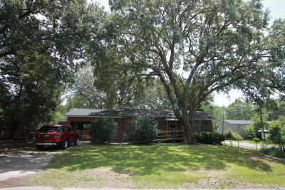 Charleston Single Family Home For Sale: 1549 N Avalon Circle