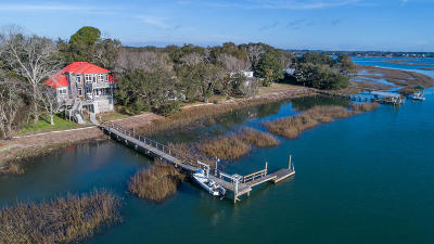 Charleston Single Family Home For Sale: 1663 Fort Lamar Road
