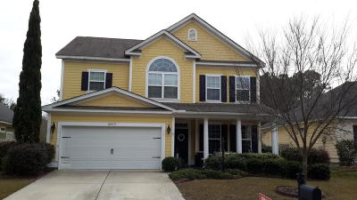 Charleston Single Family Home For Sale: 2053 Terrabrook Lane