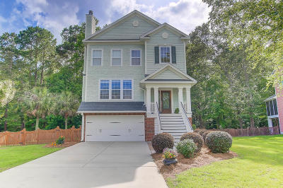 Charleston Single Family Home Contingent: 1520 Gator Track
