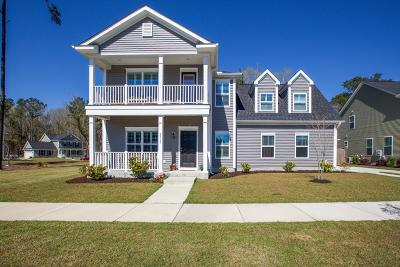 Johns Island Single Family Home For Sale: 2868 Ortega Drive