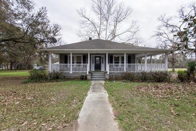 Ravenel Single Family Home For Sale: 6051 Savannah Hwy