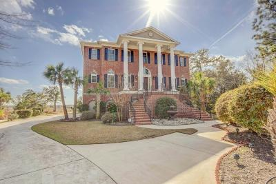 Charleston Single Family Home For Sale: 3009 White Heron Lane