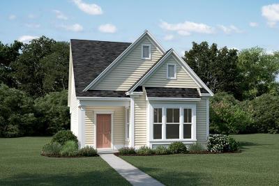 Charleston SC Single Family Home For Sale: $346,700