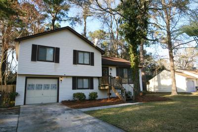 Charleston Single Family Home Contingent: 66 Peppertree Lane