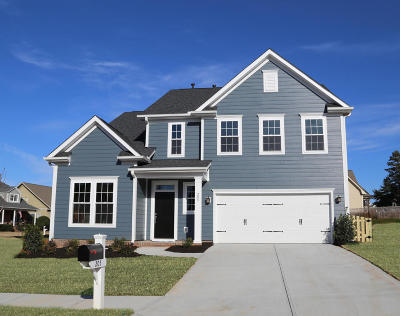 Summerville Single Family Home For Sale: 176 Ashley Bluffs Road