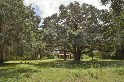 Wadmalaw Island Residential Lots & Land For Sale: 5505 Katy Hill Road