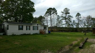 Ravenel Single Family Home For Sale: 6254 Hyde Park Road
