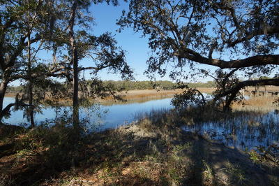 Charleston Residential Lots & Land For Sale: 590 Parrot Point Drive