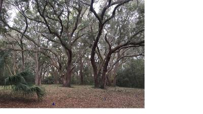 Seabrook Island Residential Lots & Land For Sale: 2148 Royal Pine Drive