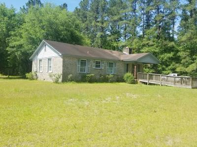 Walterboro Single Family Home For Sale: 460 Smoak Road
