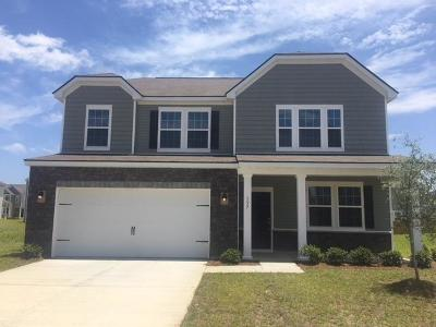 Goose Creek Single Family Home For Sale: 137 Hyrne Drive