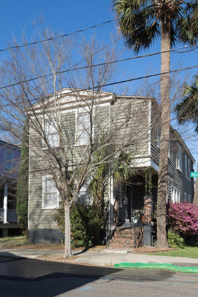 Charleston Multi Family Home For Sale: 102 Nassau Street #A,  B,