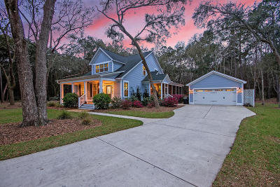 Johns Island Single Family Home Contingent: 3208 Fosters Glenn Drive