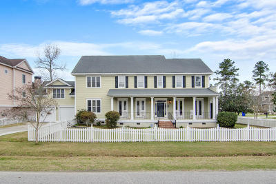 Charleston Single Family Home For Sale: 1194 Quick Rabbit Loop