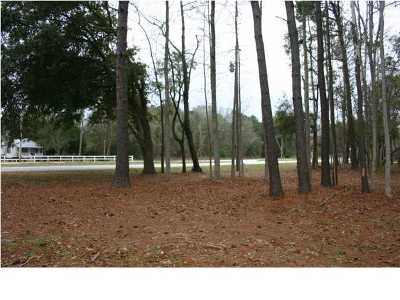 Awendaw Residential Lots & Land For Sale: 6322 N Hwy 17