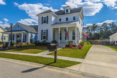 Ravenel Single Family Home For Sale: 4204 Home Town Lane