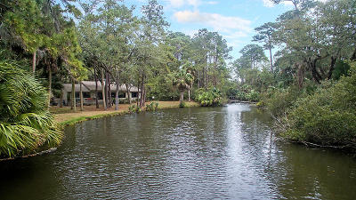 Seabrook Island Single Family Home For Sale: 2385 The Haul Over