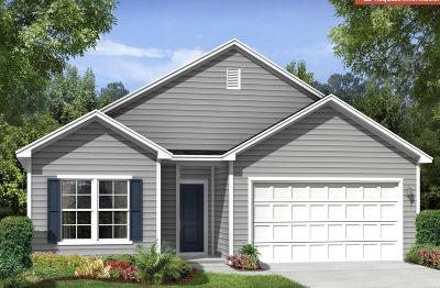 Charleston County Single Family Home Contingent: 717 Byrd Garden Road