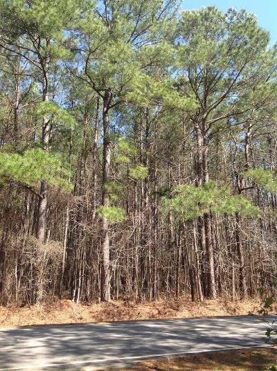 Awendaw Residential Lots & Land Contingent: Doar Road