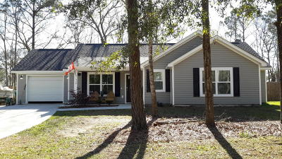 Johns Island Single Family Home For Sale: 1530 Stanwick Drive
