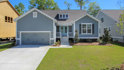 Charleston Single Family Home For Sale: 1454 Brockenfelt Drive