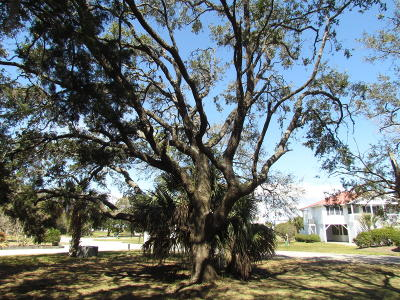 Edisto Beach SC Residential Lots & Land For Sale: $125,000