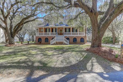 Charleston Single Family Home For Sale: 416 Brown Pelican Drive