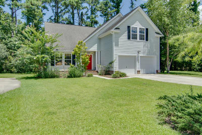 Johns Island Single Family Home For Sale: 2906 Zachary George Lane