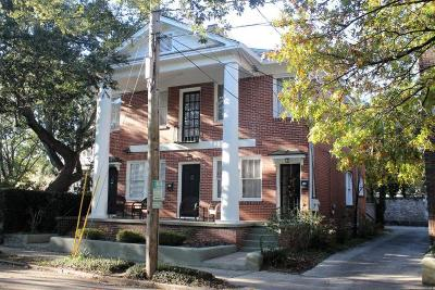 Charleston Single Family Home For Sale: 58 Laurens Street