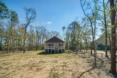 Edisto Island Single Family Home For Sale: 44 Palmetto Pointe Lane