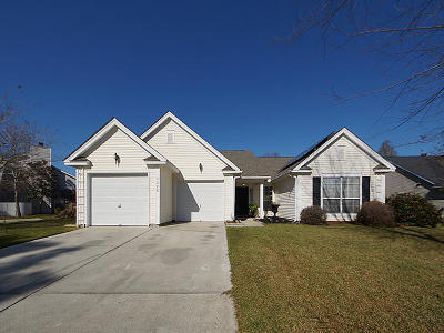 Mount Pleasant Single Family Home For Sale: 1320 Sassafrass Circle