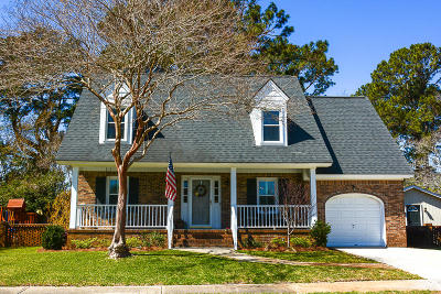 Charleston Single Family Home For Sale: 1003 Birchdale Drive