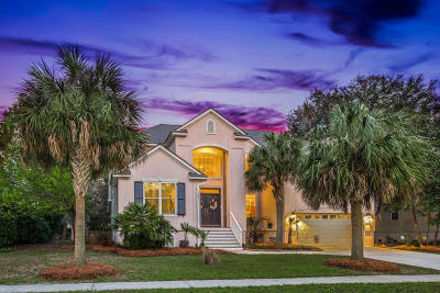 Single Family Home For Sale: 1381 Southern Magnolia Lane