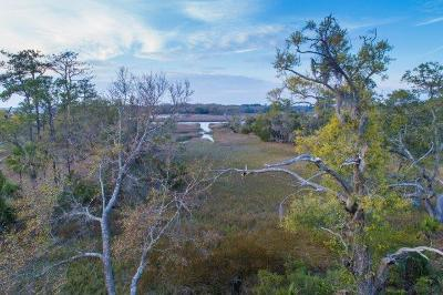 Edisto Island SC Residential Lots & Land For Sale: $75,000