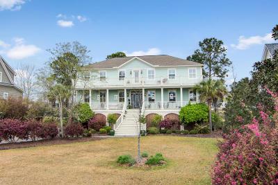 Mount Pleasant Single Family Home For Sale: 2724 Canebreak Lane