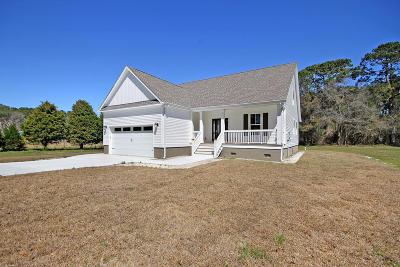 Johns Island Single Family Home For Sale: 3213 Charlie Jones Boulevard