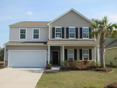 Single Family Home For Sale: 251 Decatur Drive