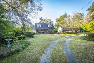 Summerville Single Family Home For Sale: 1213 S Main Street