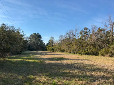 Wadmalaw Island Residential Lots & Land For Sale: Harts Bluff Road