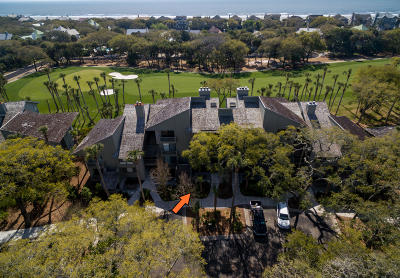 Charleston County Attached For Sale: 4967 Green Dolphin Way