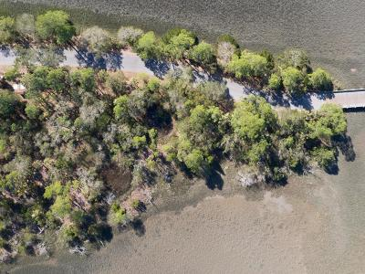 Charleston County Residential Lots & Land For Sale: 239 Eagle Point