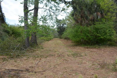 Edisto Island SC Residential Lots & Land For Sale: $59,500
