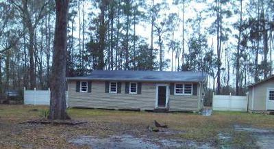 Walterboro Single Family Home For Sale: 4323 Prices Bridge Lane