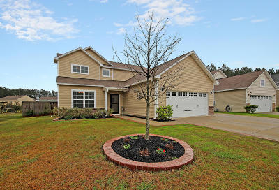 Berkeley County Single Family Home For Sale: 178 Decatur Drive