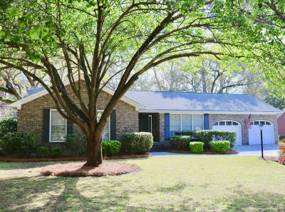 Single Family Home For Sale: 1011 Law Lane