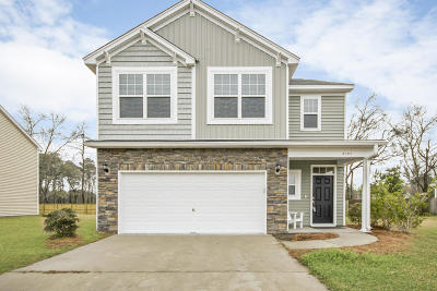 Johns Island Single Family Home For Sale: 2057 Chilhowee Drive